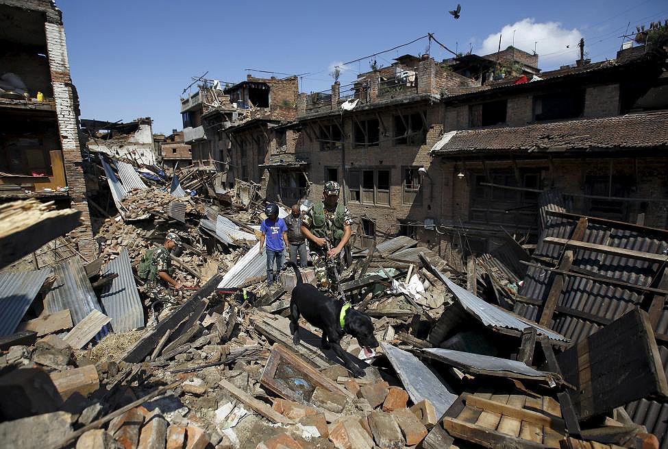 Nepalese army and a sniffer dogs search for victims amidst the rubble of collapsed houses in Bhaktapur